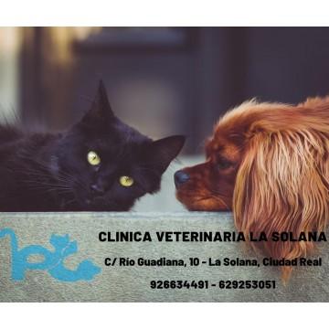 Clinica Veterinaria La Solana