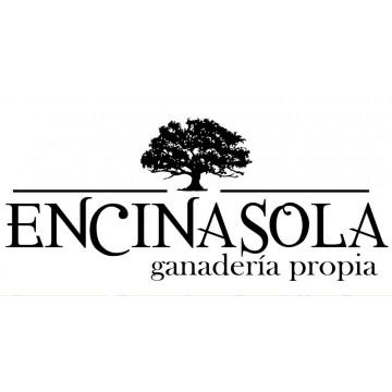 Quesos Encinasola